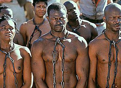 14 amendment slave citizen Status & Standing Study Pack Documents (from June 10, 2015 Webinar)